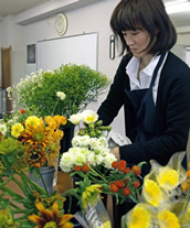Noriko Tanisaki